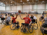 Seven college males are playing wheelchair basketball. Two of the males are attempting to gain control of the basketball that is in the air.